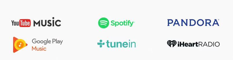 google-home-music-subscription